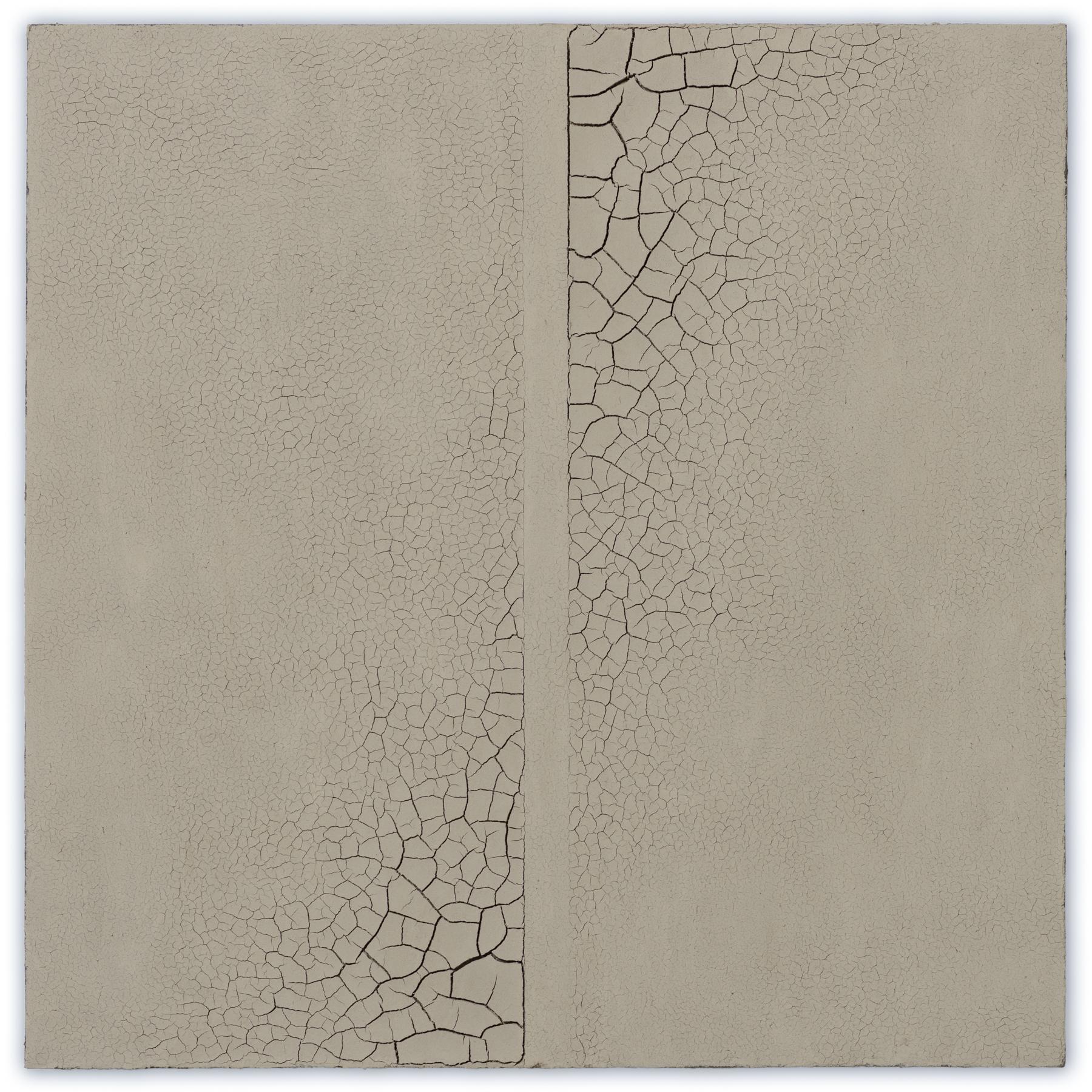 Hein van Delft, Footprints