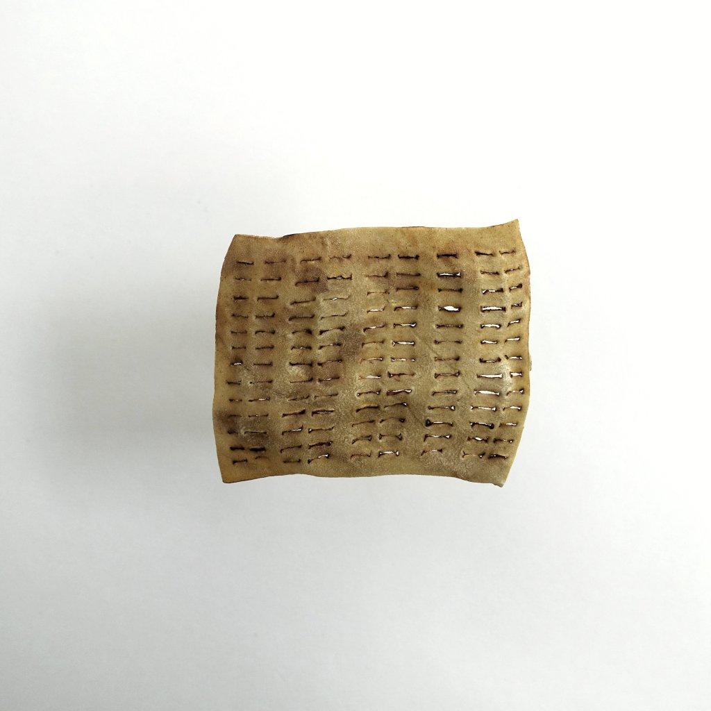 Auk Russchen, Organische Verwondering, huid, 5x7 cm