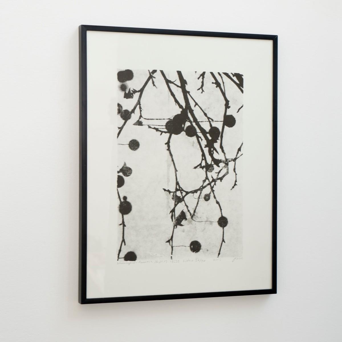 Josias Scharf, Wasserspiel - Fennsee 16.10.13.18:35, litho op papier, 40x30 cm, oplage 50