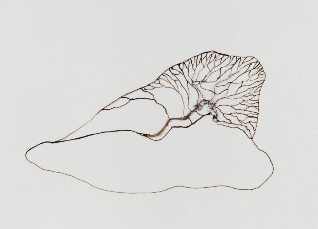 #62 Sytske de Jong, corps couche, gemengde techniek op papier, 26x33 cm