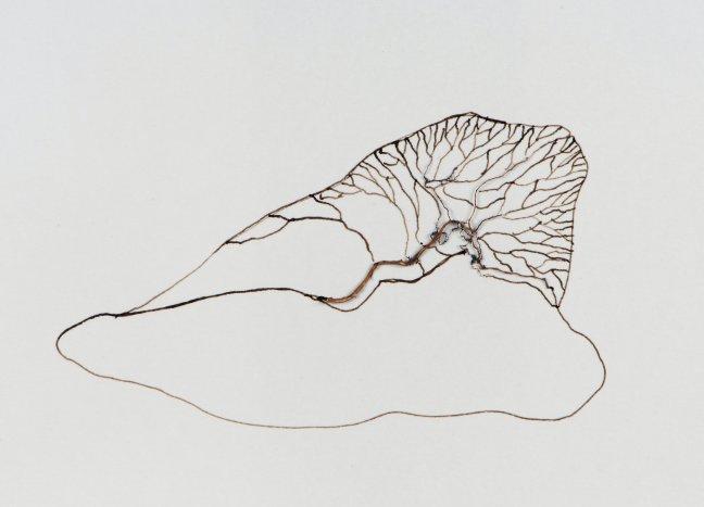 Sytske de Jong, corps couche, gemengde techniek op papier, 26x33 cm